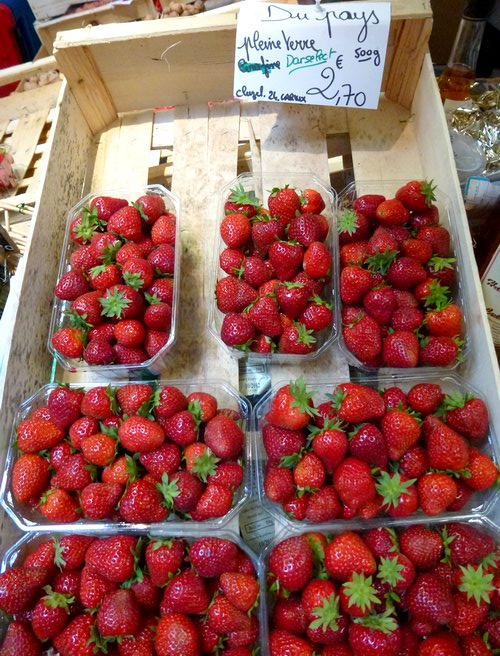 06-walk_and_bike_holidays_in_france-perigord_stawberries