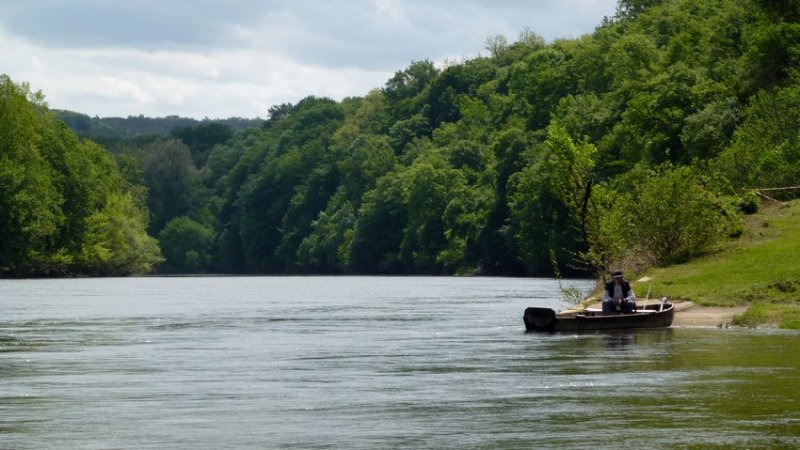 15-fish_on_the_river_dordogne-bike_holidays_in_france-perigord