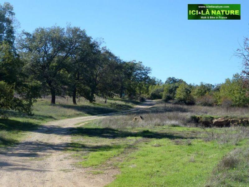 0314-landscape_spain-camino_de_santiago
