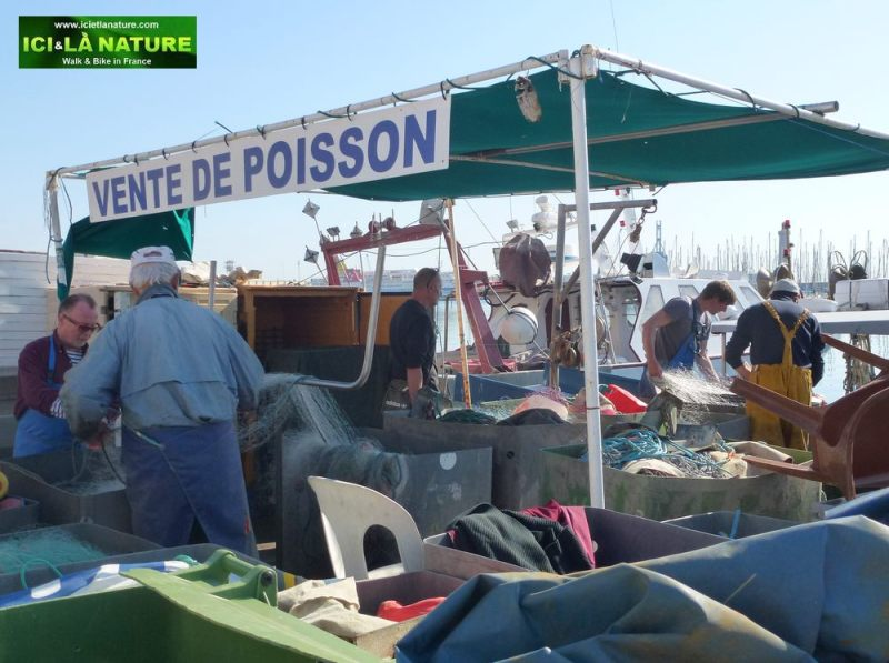 17-fishing_in_france-vente_de_poisson-sete