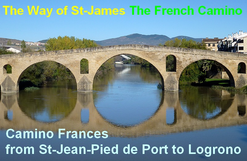French Camino from st jean pied de port to logrono