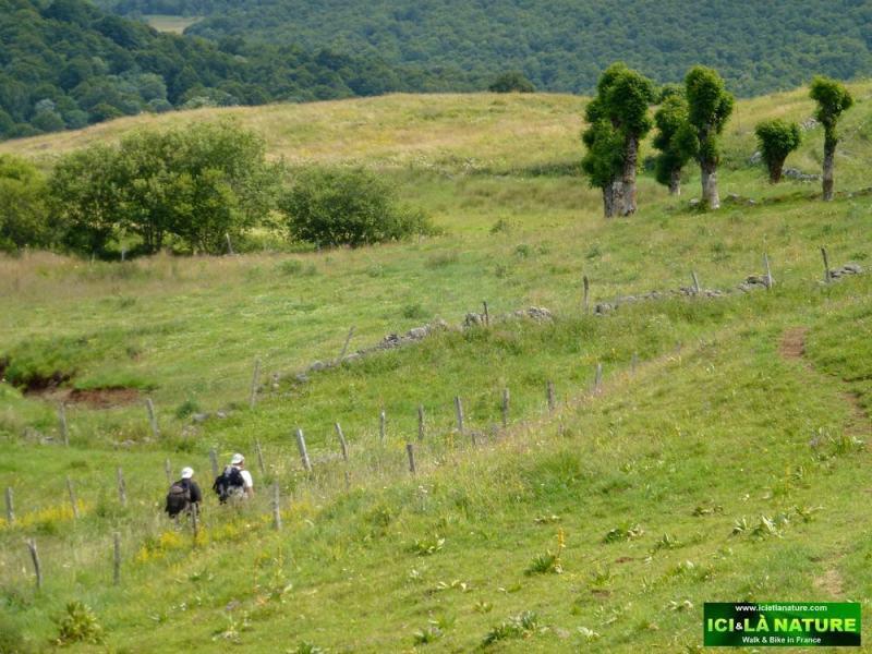 20-way to santiago de compostela in france