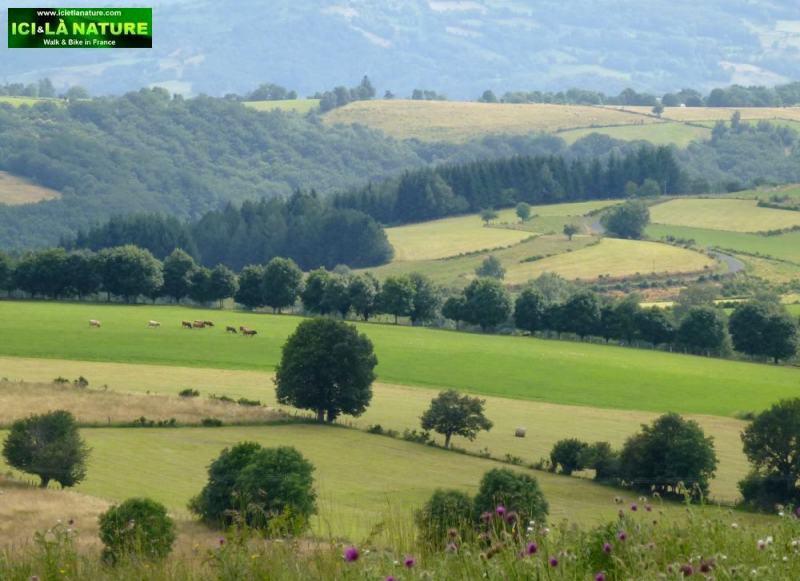 30-landscape camino aveyron