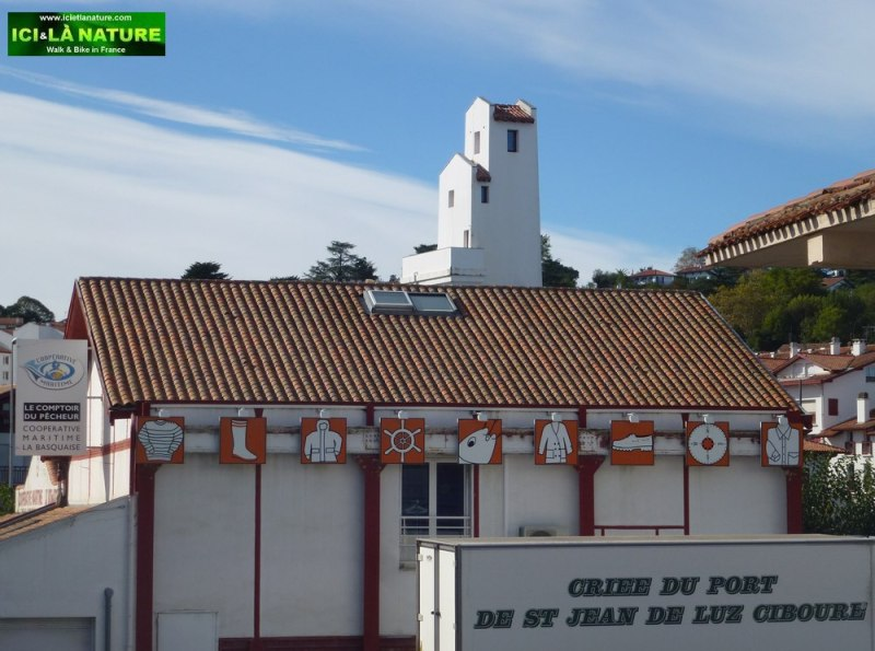 40-criee du port saint jean de luz ciboure