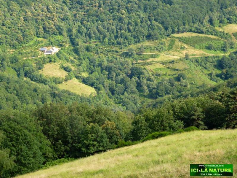 44-landscape camino in france