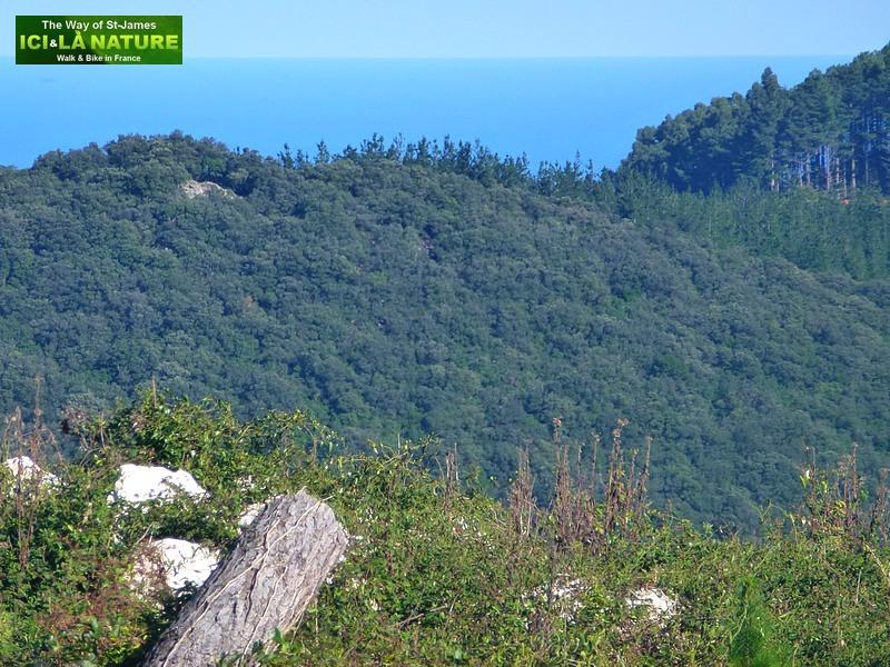 camino del norte guernica santiago de compostela