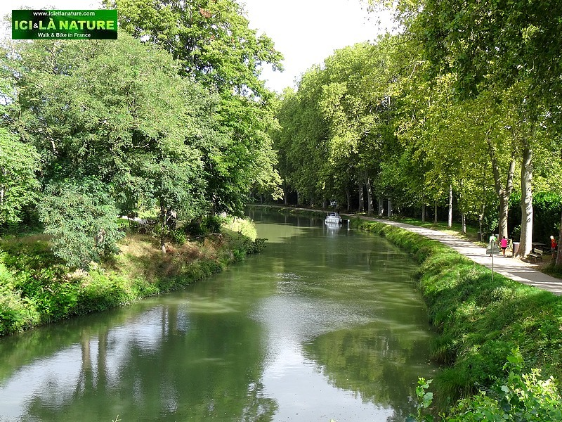 cycling along the canal du midi southern france