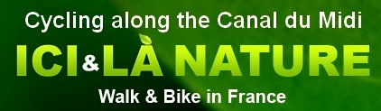Cycling holidays along the Canal du Midi south France