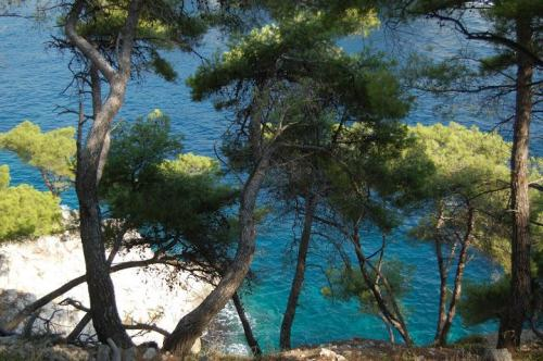 20-walking provence calanques