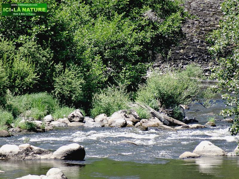 27-allier salmons river