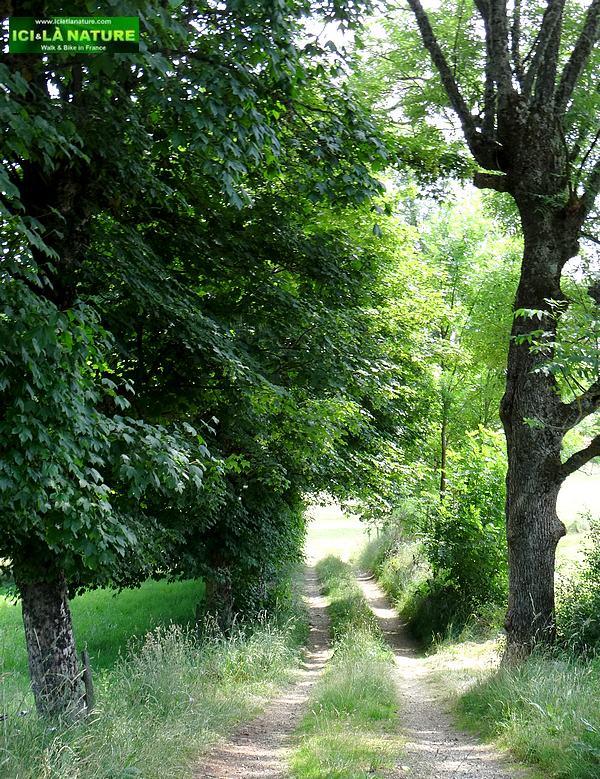 38-liitle way margeride