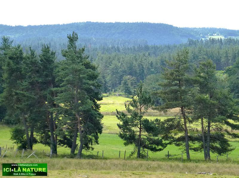 82-lozere landscape
