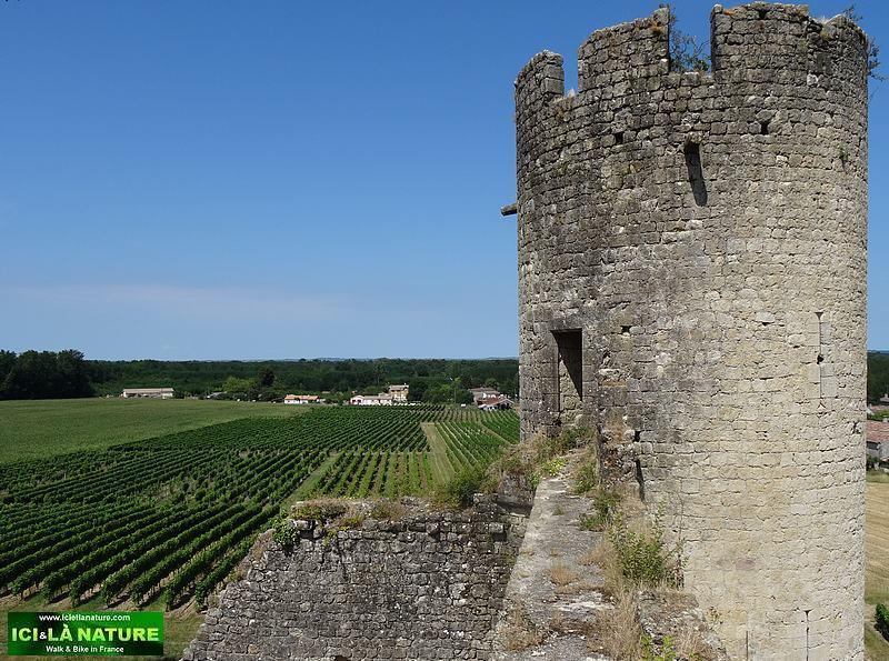 54-budos castle landscape bordeaux