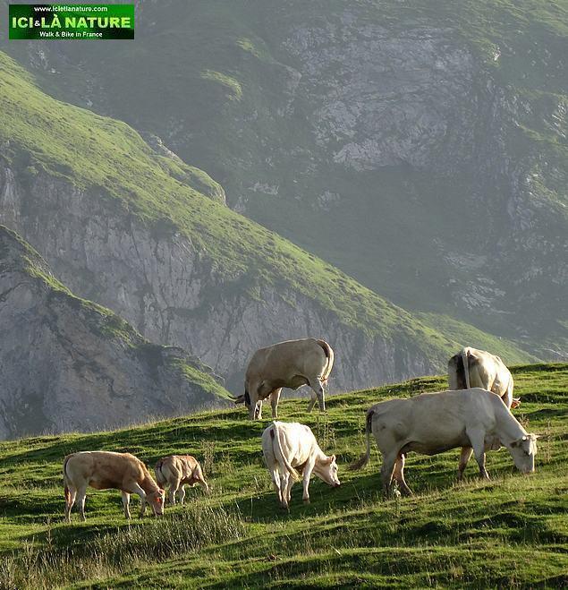 29-col du soulor france pyrenees climbing