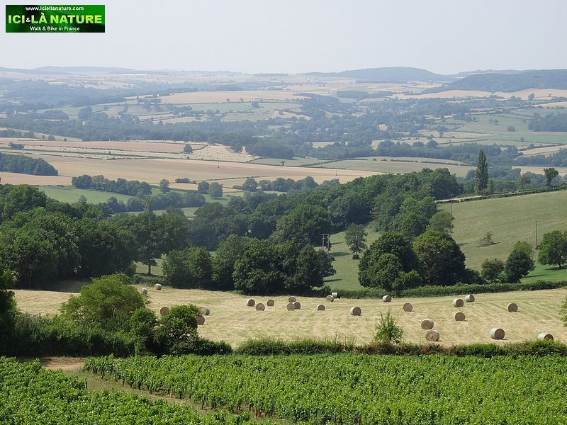 31-burgundy landscape vezelay