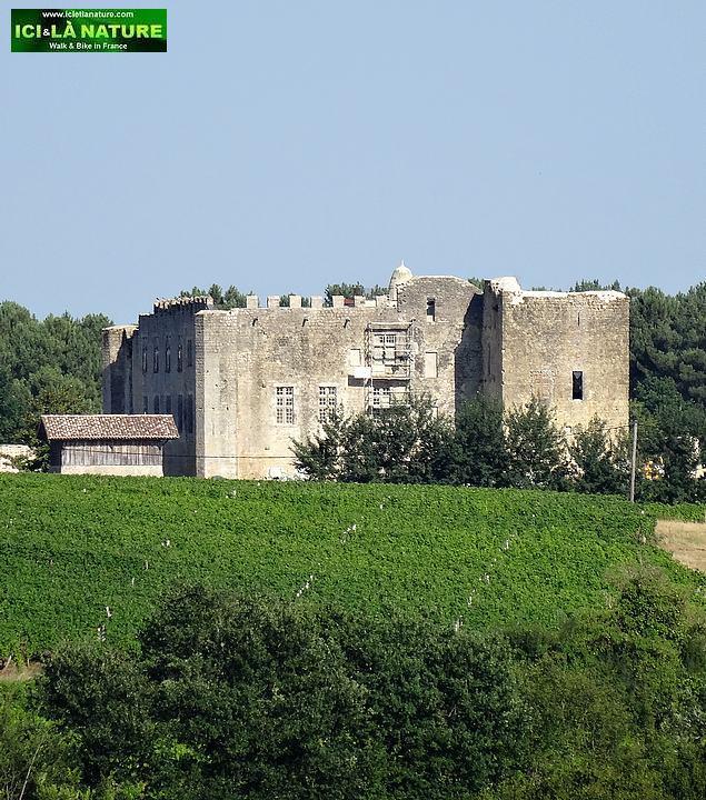 92-sauternes wine chateau de farges