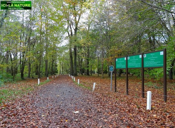 14-memorial clearing of the armistice compiegne forest