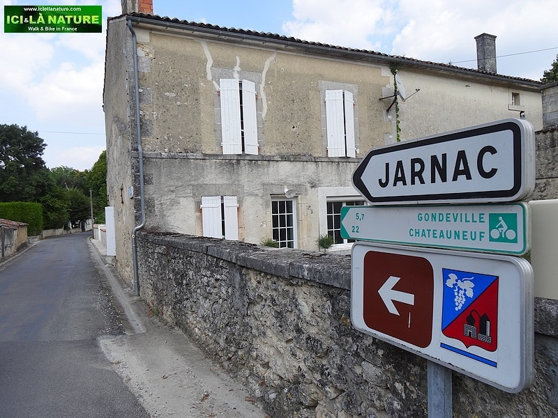 57-great cycling vacations cognac france