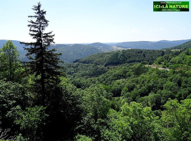 61-landscape france st james way le puy