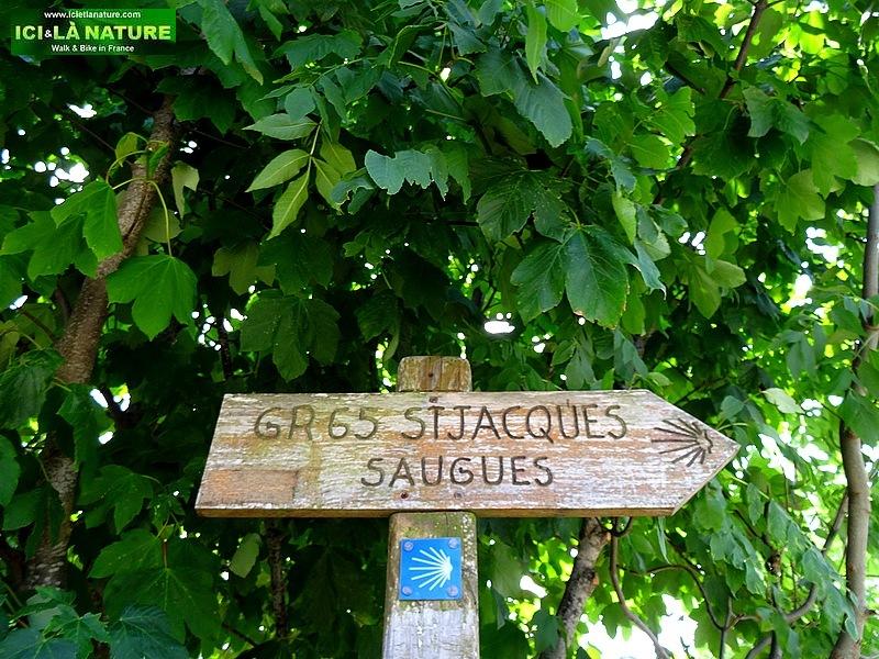 80-camino frances trail le puy route GR 65