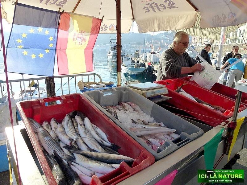 16-south france images port vendres