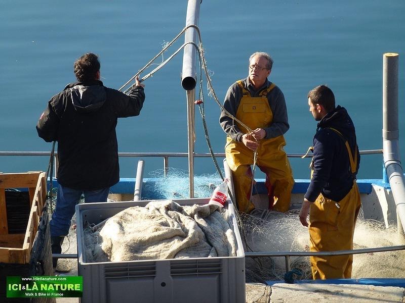 23-south france pictures fishmen port vendres