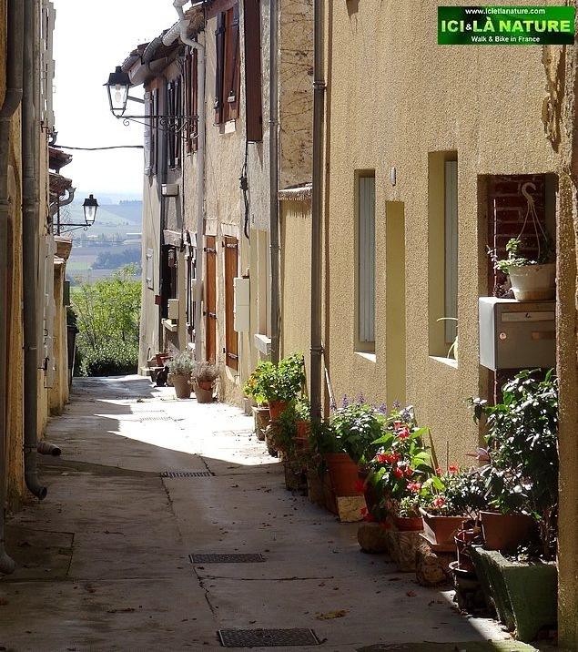 91-camino santiago pilgrimage experience lectoure
