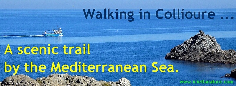 walking catalonia mediterranean sea