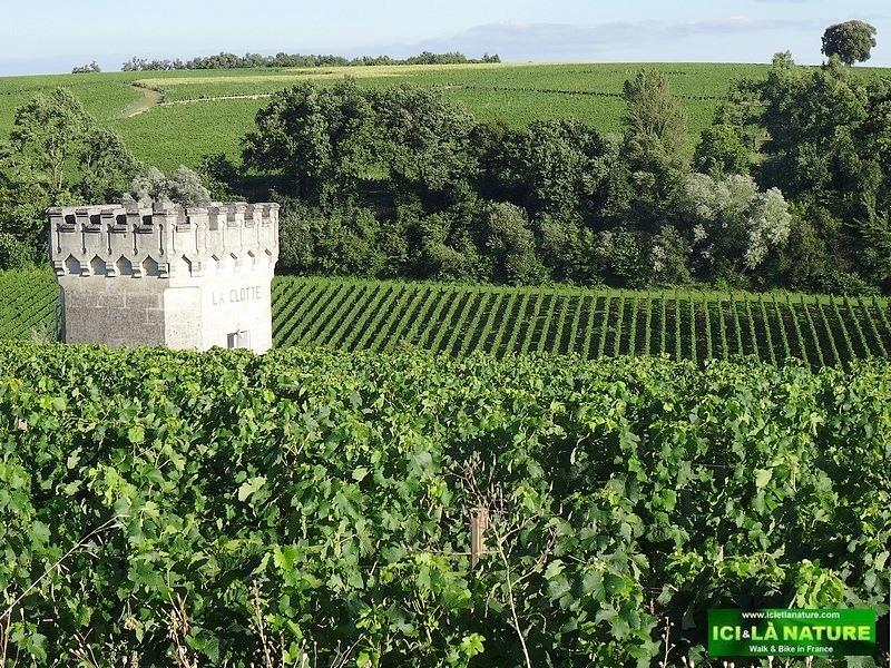 12-world heritage landscape saint emilion bordeaux france