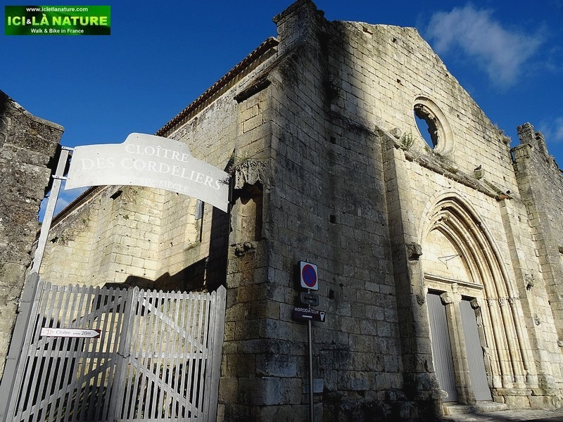 Saint-Emilion : Biking and Walking around Bordeaux High Class vineyards.