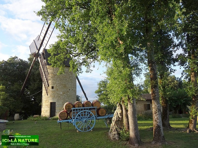28-windmill chateau haut sarpe saint emilion