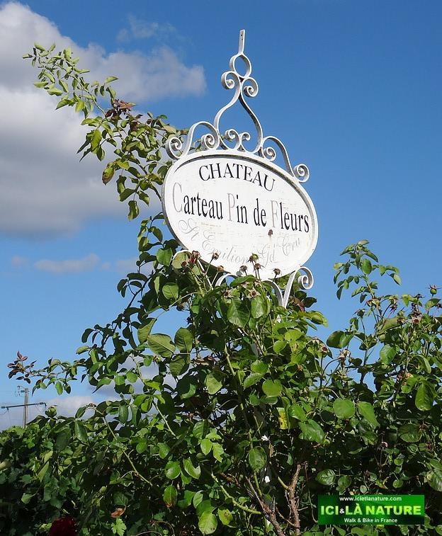 60-chateau carteau pin des fleurs