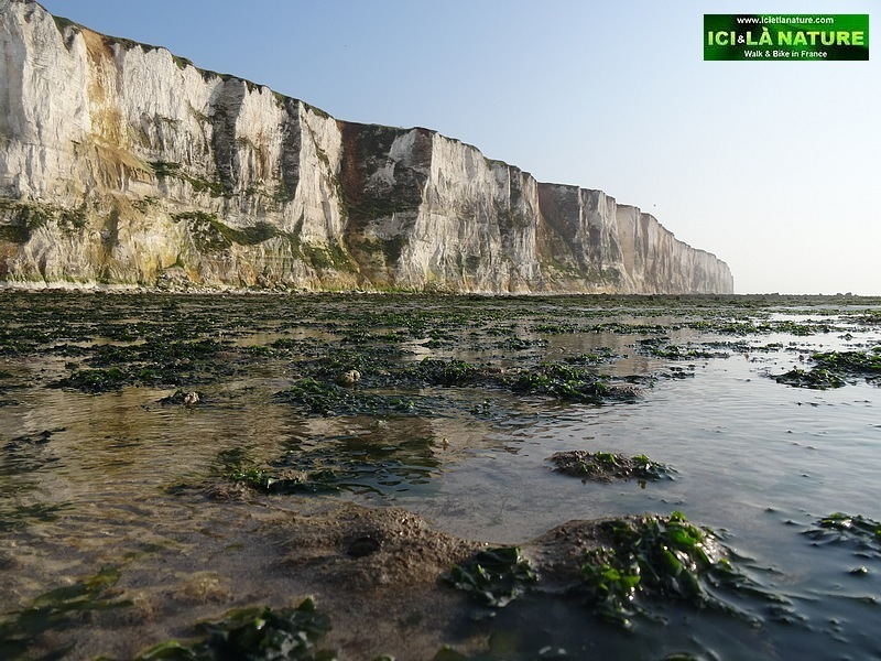 62-Cliffs le treport normandy