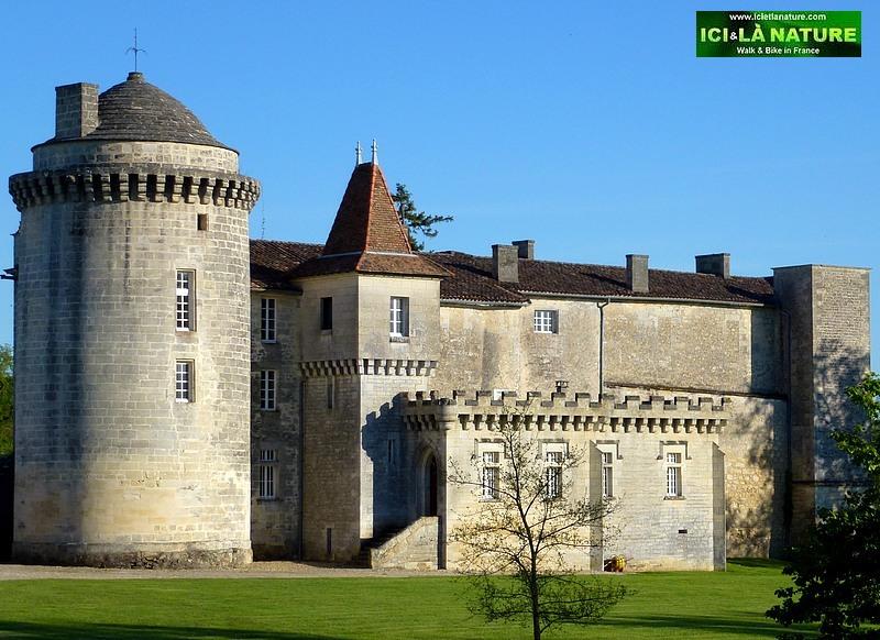 73-chateau la rose saint emilion