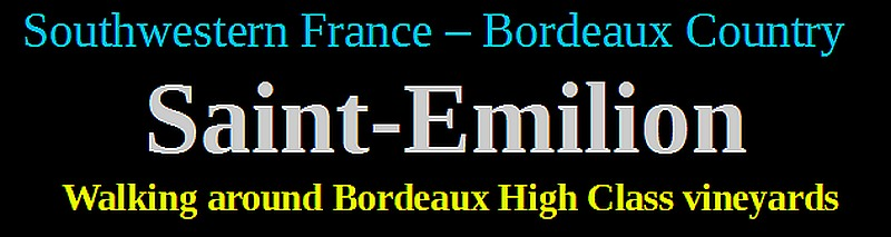 Walking around Bordeaux High Class vineyards saint emilion