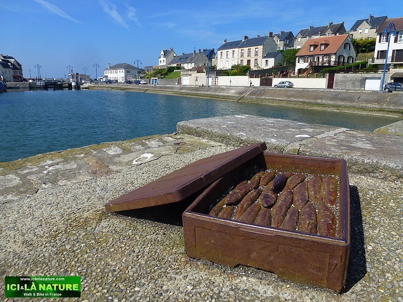 09-normandy landing beaches tourism sightseeing