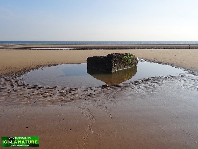 12-omaha beach landing beach colleville
