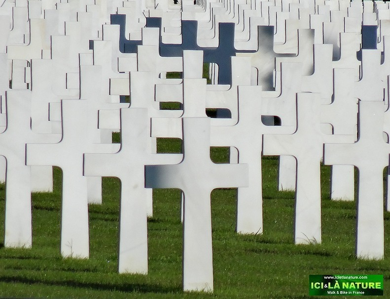 14-graves normandy american cemetery 1944