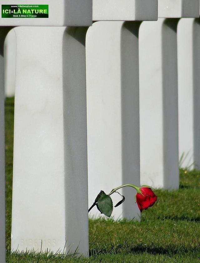 24-commemoration normandy D-Day june 1944