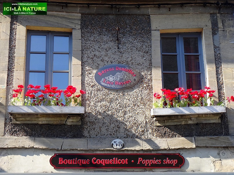 35-bayeux poppies normandy shop