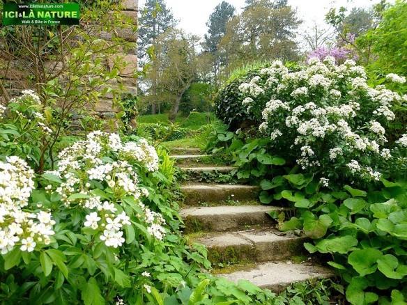 41-escalier fleurs abbaye