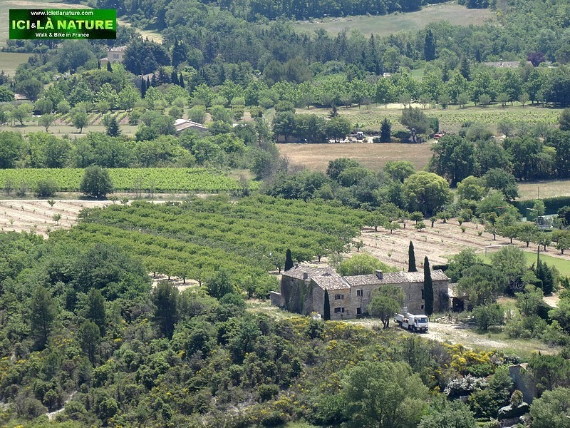 13-farm in provence