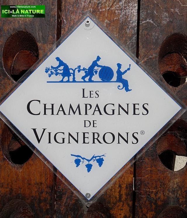 26-les champagnes des vignerons