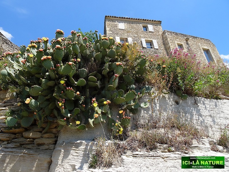 26-medieval perched village provence gordes