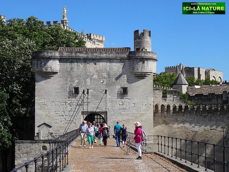 26-provence avignon bridge