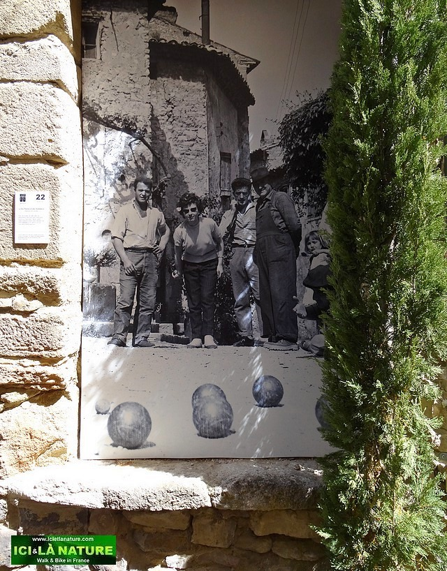 27-wall poster petanque provence