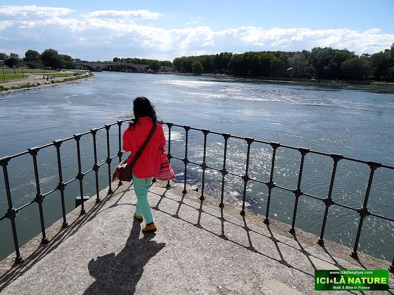 28-provence avignon bridge