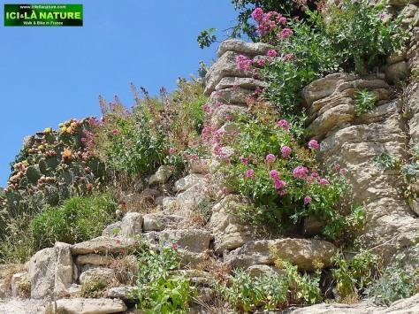 29-village of luberon provence