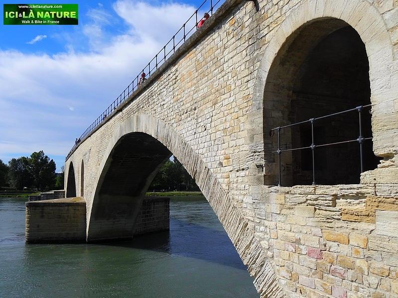 30-provence avignon pont