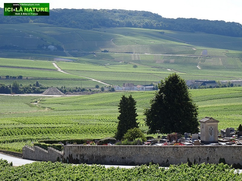 31-champagne vineyards landscape hautvillers